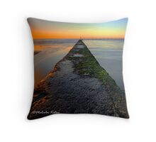 Sobriety Test - Austinmer, NSW Throw Pillow