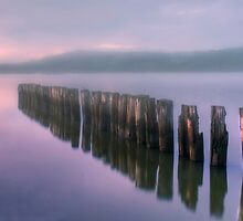 Morning fog by Veikko  Suikkanen