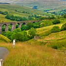 Dales Viaduct by Trevor Kersley