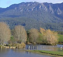 Paradise - Tasmania by gaylene