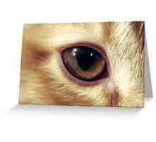 Pocket's Eye Greeting Card