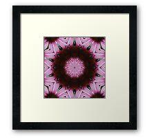 Pink Cone Flower Kaleidoscope Framed Print