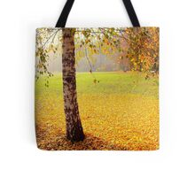 The end of the golden autumn Tote Bag