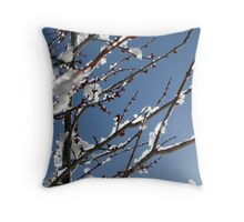 Ice Berry Throw Pillow