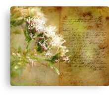 the book of life Canvas Print