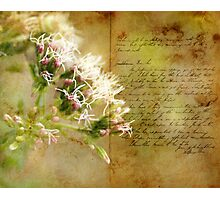 the book of life Photographic Print