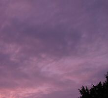 Purple Skies by Ginny York