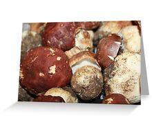 Fabulous mushrooms Greeting Card
