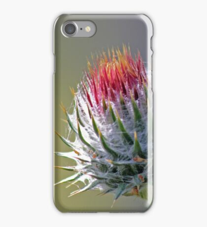 Promise of a Thistle iPhone Case/Skin