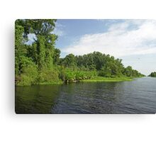 St Johns headwaters Canvas Print