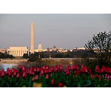 Washington DC, Arlington tulips, and a Sun Beginning to Set Photographic Print