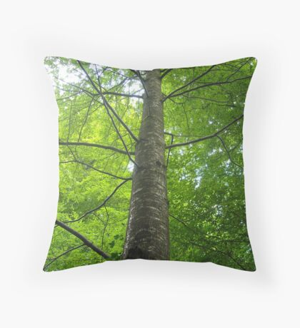 straight up Throw Pillow