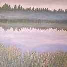 On Blue Pond (revised) by Lynne Kells (earthangel)
