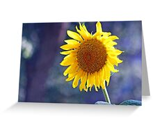 Giant Sun Flower Posing for a Portrait Shot Greeting Card