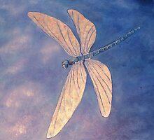 Into the Light by Lynne Kells (earthangel)