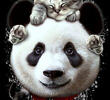 CAT ON PANDA by MEDIACORPSE