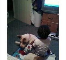 My nephew sitting on sapphires back by Limitless