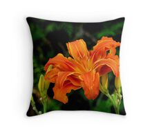 a daylily for today Throw Pillow