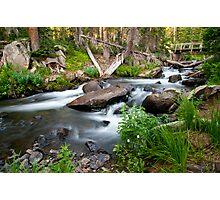 Bridge Over Mitchell Creek Photographic Print