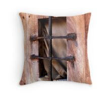 Old Old Window Throw Pillow