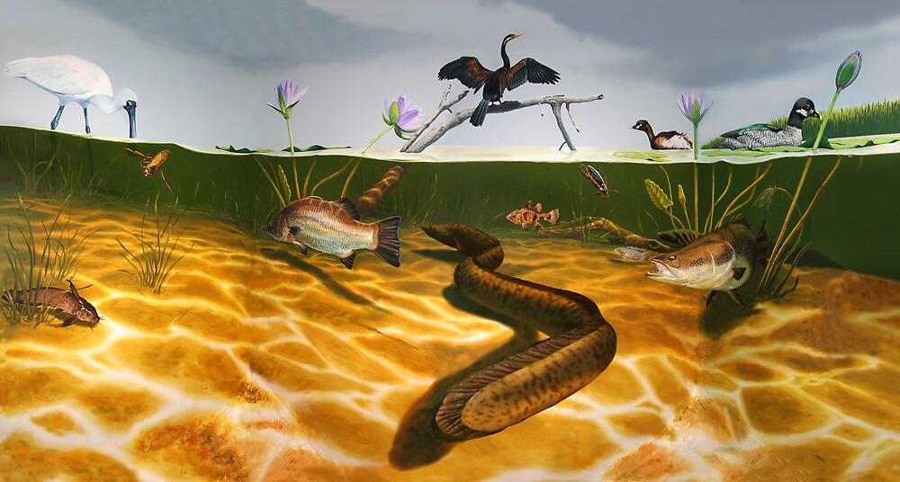 Swamp Scene by tomcosic