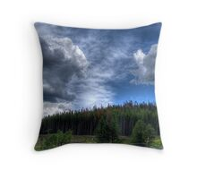 RMNP 019 Throw Pillow