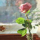 Sun Kissed Rose by Artboy2009