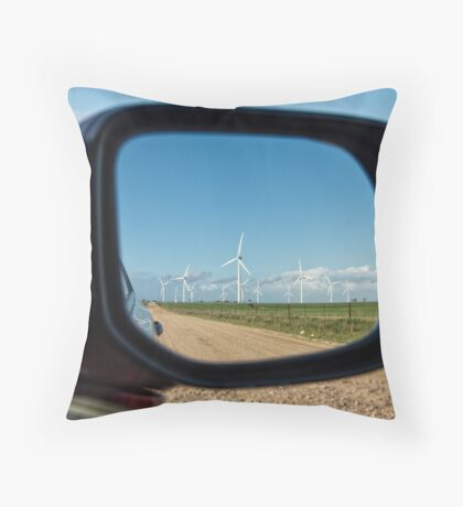 Reflections of Wattle Point Throw Pillow