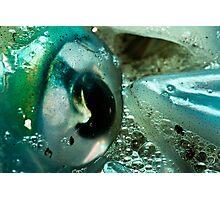 Squid Eye Macro Photographic Print