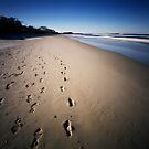 walking on the beach by Sue Hammond