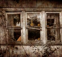 Dining Room Windows by Delany Dean
