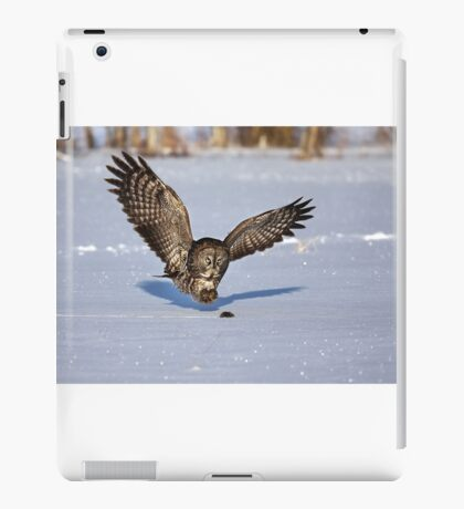 Great Grey owl catches a mouse iPad Case/Skin