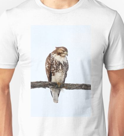 Red-tailed Hawk - Perched T-Shirt