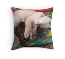 snuggle Throw Pillow