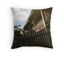 orb spider in morning light Throw Pillow
