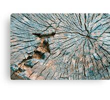 Cut Tree Abstract Canvas Print