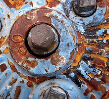 Blue Hydrant by Tama Blough