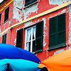 Umbrellas by Lucas Himovitz