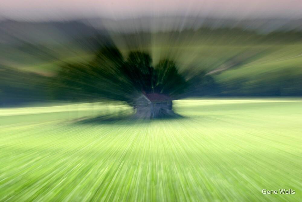 Dream Farm by Gene Walls