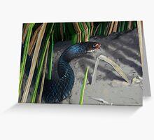 The Cornered Snake Greeting Card