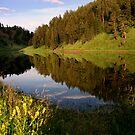 Phantom Lake by Martin Smart