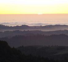 The Last Ray. Russian Ridge, San Francisco Bay Area. Sunset by Igor Pozdnyakov