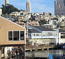 San Francisco, a View From pier 39 by Igor Pozdnyakov