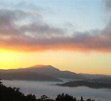 Tassie - West Coast by Rustas