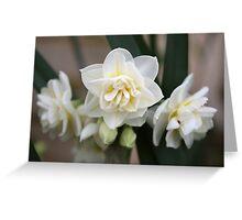 Triple Bloom Greeting Card