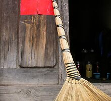 Brush, Yunnan, South China by JonathaninBali