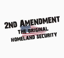 2nd Amendment The Original Homeland Security by 8675309