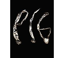 Pig Metal Photographic Print