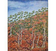 Northern Territory imaginings Photographic Print
