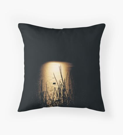 Icey Night Throw Pillow